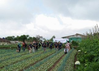 Belasan Blogger terkenal terkejut setelah tahu rahasia dibalik pertanian sayur ini dikelola